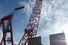 meadowbank-crane